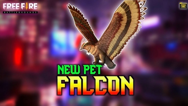 Nama Pet Ff Keren Falco Dengan Mudah Ini Cara Buatnya