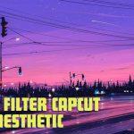 Rumus Filter CapCut Video Aesthetic