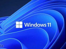 Fakta Windows 11